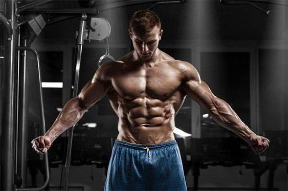 In che modo il testosterone influisce sulla combustione dei grassi?